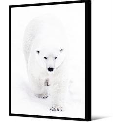Toile encadré Ours blanc qui marche 100 x 140 cm, collection My gallery, Pôdevache