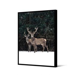 Toile encadré Duo cerfs dans la neige 65 x 92,5 cm, collection My gallery, Pôdevache