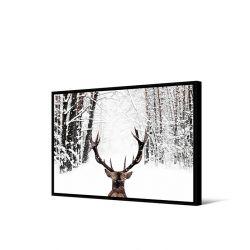 Toile encadré Cerf vu de dos ,format paysage 65 x 92,5 cm, collection My gallery, Pôdevache