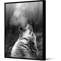 Toile encadrée Loup portrait, 100 x 140 cm, collection Wild Thing, Pôdevache