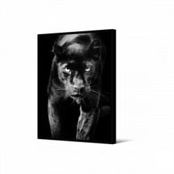 Toile encadrée Panthère portrait, 80 x 120 cm, collection Wild Thing, Pôdevache
