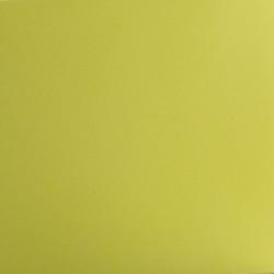 Coussin d'assise pour chaise avec accoudoirs Jut vert pistache