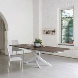 Table Sculptura en bois orme 160/200/240x90 cm