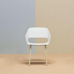 Lot de 4 fauteuils Babila 2755, Pedrali couleur blanc et pieds en bois certifié FSC